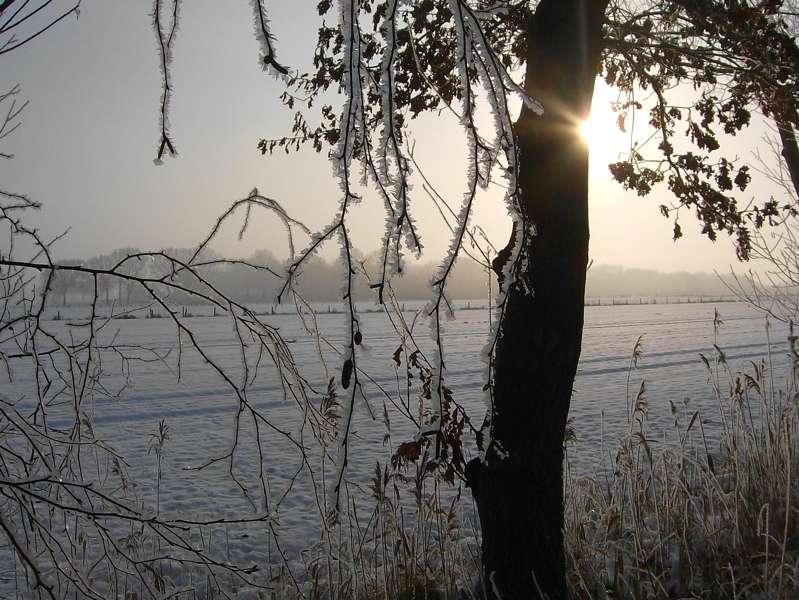 weihnachten2009_m